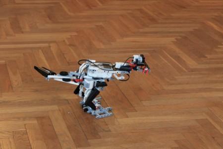 robotyka1