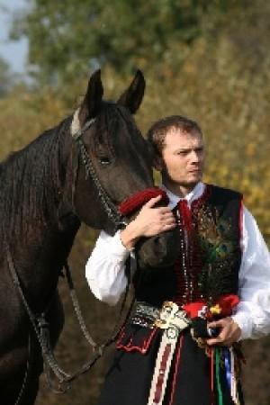 konie1